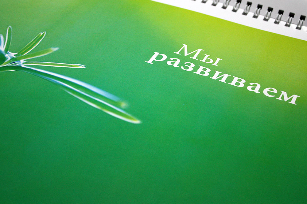 IMG_6380.jpg